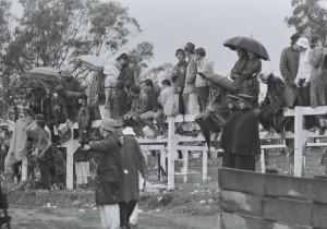 Race Fans 1969